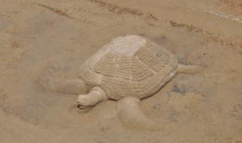 Dođite na Festival skulpture u pijesku<br>