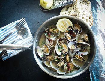 Rakovi i školjke - Schalentiere und muscheln - Crostacei e frutti di mare - Crabs and seashells