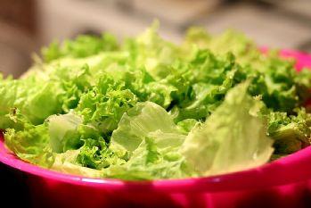 Salate - Insalata - Salad