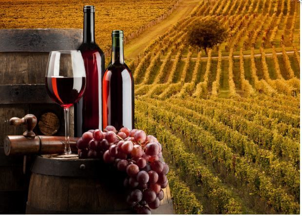 Besplatan seminar: Certifikacija vinarija prema IFS Food standardu