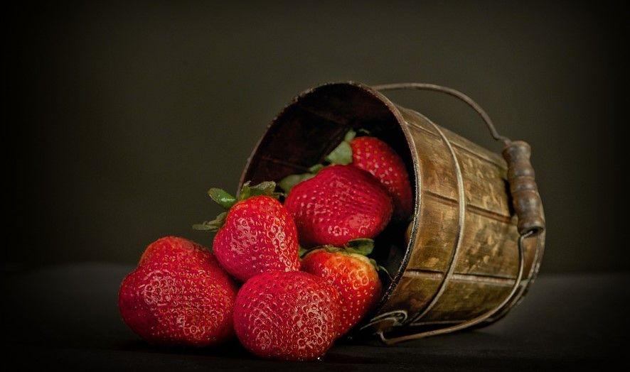 Dan domaće jagode sutra na Veletržnici