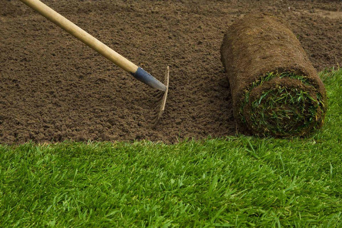 Trebam ponudu za postavljanje trave u rolama