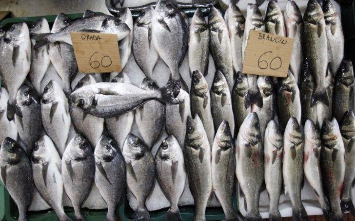 Prodavač u ribarnici (m/ž)