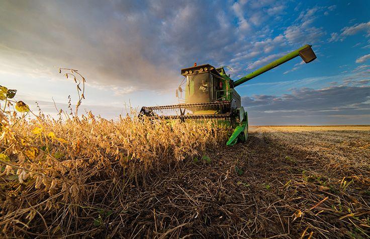 Potpora mladim poljoprivrednicima