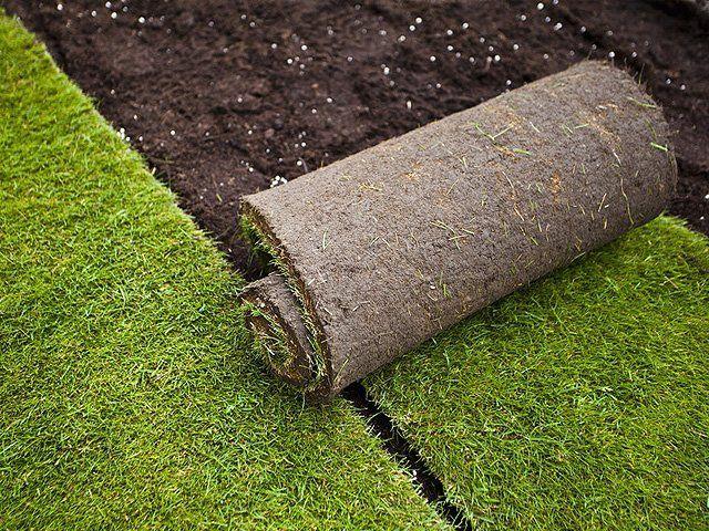 Trebam ponudu za kupnju prirodne trave u rolama