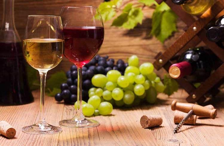 Kvarner Wine Fest – Međunarodni festival vina i delicija u Opatiji