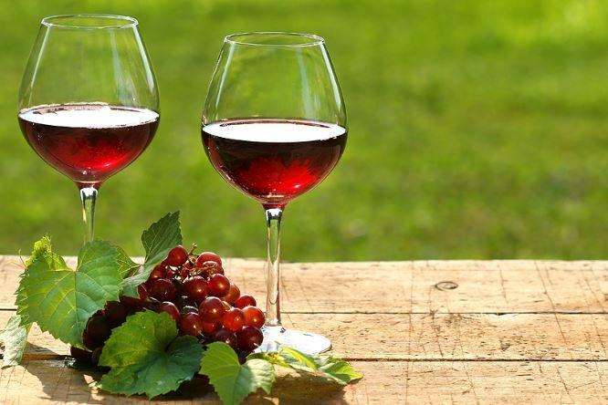 Vinistra - međunarodna izložba vina i vinske opreme