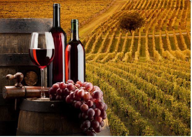Objavljen je natječaj za mjeru: Ulaganja u vinarije i marketing vina