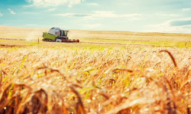 Poljoprivrednici, osigurajte svoju proizvodnju - država vam plaća 70% premije