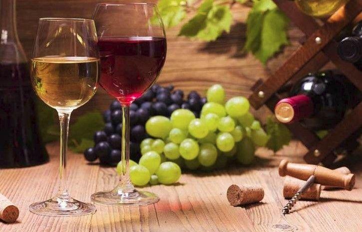 Uvedena nova mjera za vinare – do 100 tisuća eura za informiranje potrošača o kakvoći hrvatskih vina
