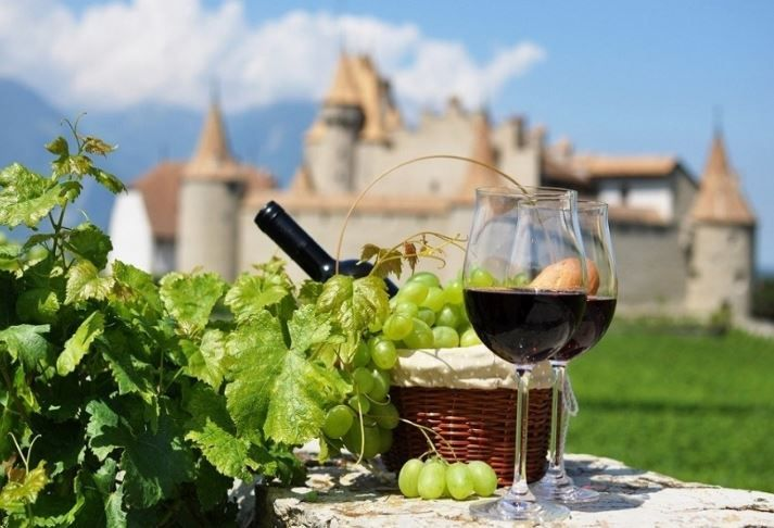 Eno entuzijasti vinskim manifestacijama brendiraju Hrvatsku