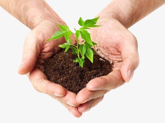 Obavijest poljoprivrednicima o besplatnim analizama tla
